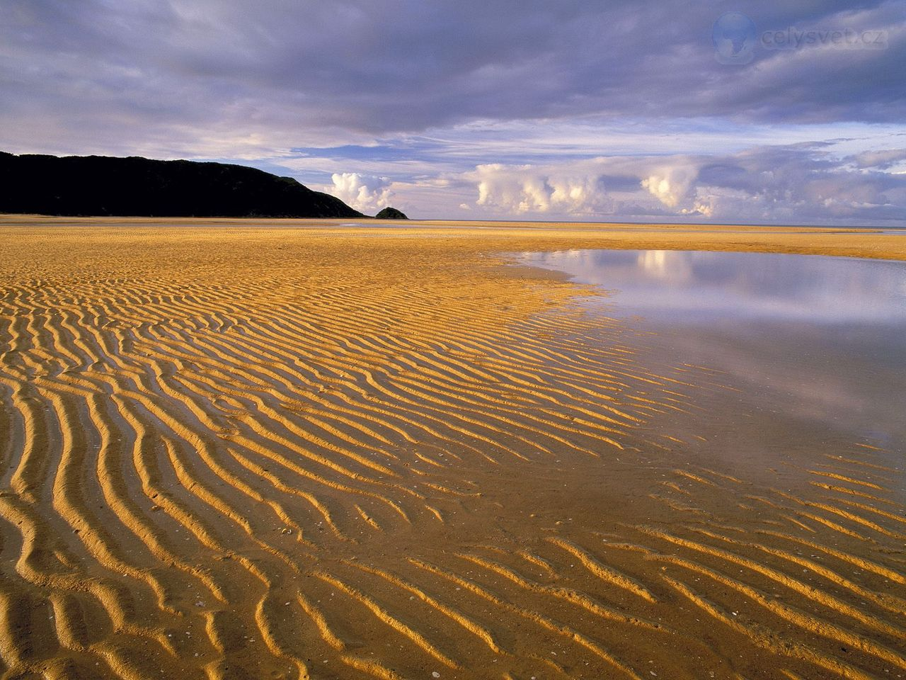 low-tide--abel-tasman-national-park--south-island--new-zealand