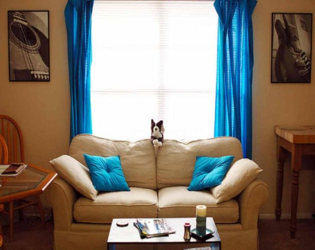 The-interior-design-is-superb-living-room-with-curtains-and-cushions-bright-blue