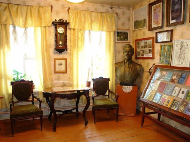 shtory-dlya-muzeev-bibliotek-25